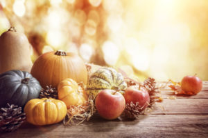 Various autumn fruit and vegetables on a wood surface